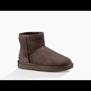 Mini brown uggs